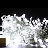 HG® 100M 500 LED Lichterkette Kaltweiß Weihnachtslichterkette Transparent für Weihnachtsfest Hochzeit Festlich Aussen Fassaden