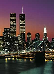 fototapete motivtapete bildtapete wall mural manhattan brooklyn bridge new york bei nacht. Black Bedroom Furniture Sets. Home Design Ideas