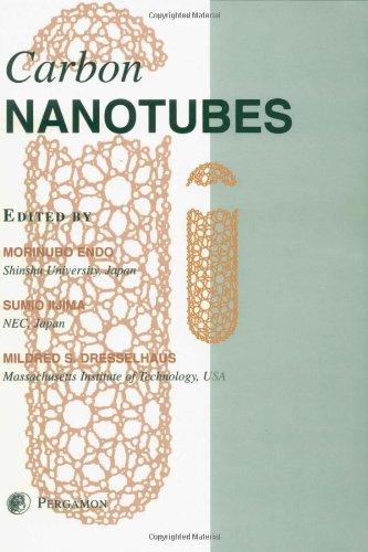 Carbon Nanotubes (Carbon , Vol 33)