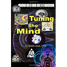 Tuning the Mind: Geometries of Consciousness - Holonomic Brain Theory and the Implicate Order
