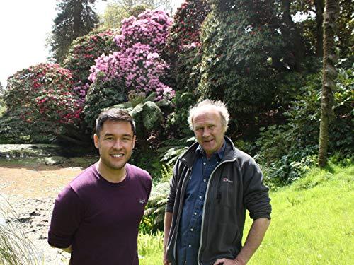 Von Rhododendren und Nelken
