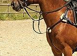 Collier de chasse Windsor Equestrian à 5points en cuir Poney noir