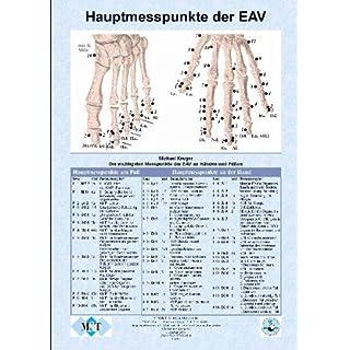 Die wichtigsten Messpunkte (Hauptmesspunkte) der Elektroakupunktur an Händen und Füßen (Info-Blatt, Papier, DIN A4)