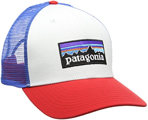 b60291080604c Patagonia 38017WFABALL Gorra white w fire andes blue Única