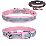 Newtensina Modus Hundehalsband Reflektierende Welpen Halsbänder für Kleine Hunde Medium Hunde