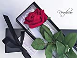 """Single Stem Red Rose in a Silk Lined Black Presentation Gift Box including """" Always & Forever """" Gift Card. (Sassi)"""