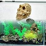 Ularma Halloween Aquarium Decorative Resin Skull Crawler Dragon Lizards Decoration 4