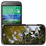 hello-mobile Bild Hart Handy Schwarz Schutz Case Cover Schale Etui // M00137320 Buntspecht Vogel // HTC One Mini 2 / M8 MINI / (Not Fits M8)