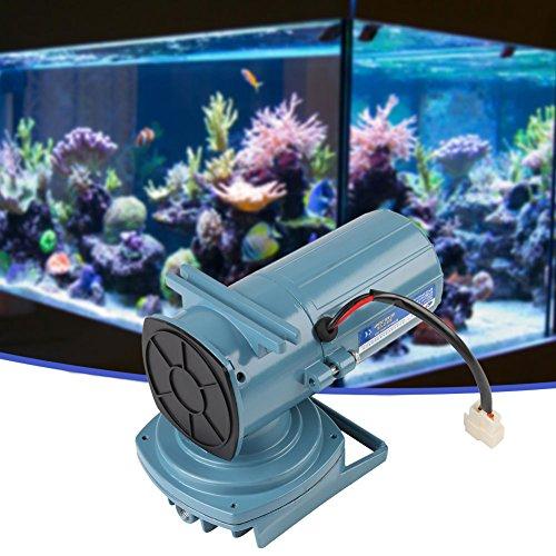 Aérateur de pompe à air de CC 12V 35W pour l'outil d'aquarium d'aquarium d'étang de poissons