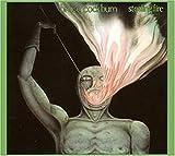 Songtexte von Bruce Cockburn - Stealing Fire