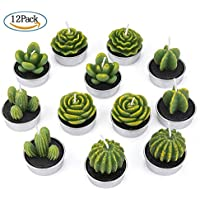 ZeWoo 12 Piezas Velas en Forma de Planta, Hechas a Mano Delicadas Plantas Decorativas Cactus Tealight Sin Humo para Día de San Valentín, Cumpleaños Fiesta de Boda Decoración
