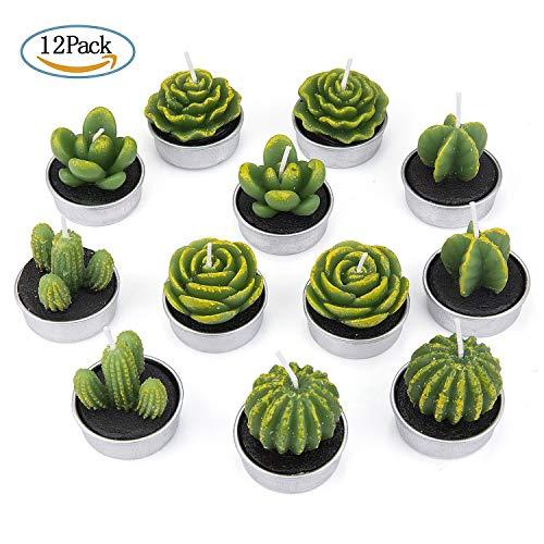 ein kaktus zum valentinstag ZeWoo 12 Pcs Zart Kaktus-Kerzen, Dekorativ Handarbeit Zart Kaktus Teelicht Rauchlos Niedlich Grün Pflanze zum Valentinstag, Geburtstagsfeier oder Hochzeit