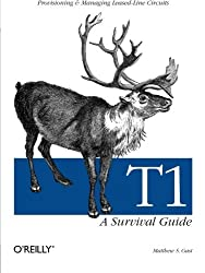 T1: A Survival Guide by Matthew S. Gast (2001-09-15)