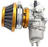 lucklyscar® carburatore filtro aria Pezzi di alimentazione di trattamento di carburante per 43cc 47cc 49cc oro