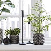 Tutti Decor Wikholm Decorative Black Ceramic Glazed Planter Pot Set of 2 Chevron Dots 13cm and 10cm
