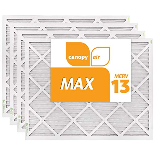 Canopy Air 20x25x1 MERV 13, MAX Allergen Protection Air Filter for a  Healthy Home, 20x25x1, Box of 4 Made in The USA