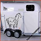 Stute mit Fohlen Aufkleber Anhänger Pferd Anhänger ca.80x60cm