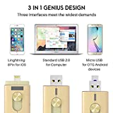 Flash Drive for iPhone [Apple MFi Certified] JoyGo 32GB i Flash Drive USB Memory Stick 3in1 Lightning 8 pin/USB 2.0/Micro USB OTG External Storage Expansion for iOS iPad iPod, Android OTG & PC -Gold
