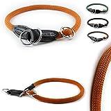 [Gesponsert]Training-Line von CarlCurt: Retriever-Hundehalsband aus strapazierfähigem Nylon, S 49-51cm, terra