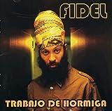 Songtexte von Fidel Nadal - Trabajo de hormiga