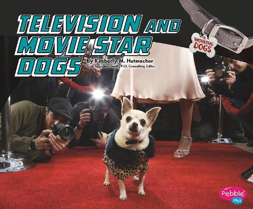 Television and Movie Star Dogs (Pebble Plus: Working Dogs (Library)) by Kimberly M Hutmacher (2010-08-06)
