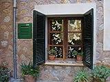 Fensterbilder Fenstertattoo - Schmetterlieblinge aus Milchglasfolie, transparente Fensterfolie