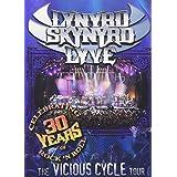 Lynyrd Skynyrd Lyve - Vicious Cycle