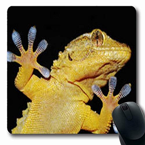 Luancrop Mousepads Lustige Gecko-Eidechse, die seins Spaß-klebende Finger-Tier-Wissenschafts-Detail-längliches Spiel-Mausunterlage-rutschfeste Gummimatte zeigt -