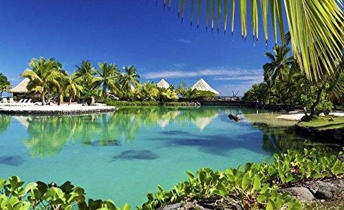 Fototapete Vlies Tapete Vliestapete DekoShop Hawaii Ozean Häuser AMD577VEXXL VEXXL (312cm. x 219cm.) Wallpaper Photo Mural | Natur Pflanzen Strand Sand Horizont Meer Wasser