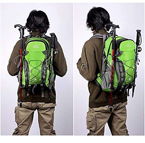 Meisohua Netchain Camping Backpack Large Trekking Rucksacks, Lightweight Waterproof Hiking Rucksack 40 45 Litre Outdoor Travel Bags, DofE Suitable Backpacks Green