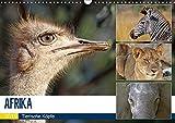 AFRIKA - Tierische Köpfe (Wandkalender 2019 DIN A3 quer): Porträts in freier Wildbahn (Monatskalender, 14 Seiten ) (CALVENDO Tiere)