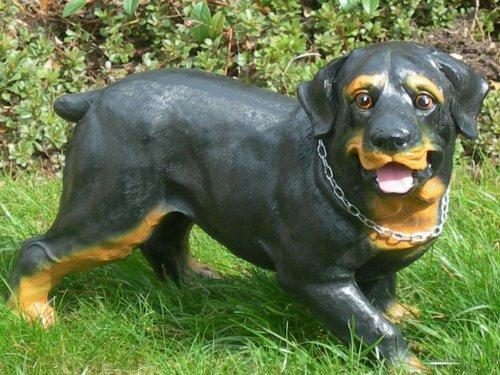 Unbekannt Gartenfigur Tier Figur Hund Rottweiler Höhe 25 cm Dekofigur aus Kunstharz -
