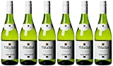 Torres Spanien Vina Sol Parellada Miguel, 4189, 6er Pack (6 x 750 ml)