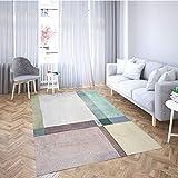 PTKU Pastello Shaggy Soffice Tappeto,Microfibra Antiscivolo Tappeti, per Salotto, Camera da Letto, Corridoio, Cucina,50 * 80cm