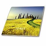 3drose schönen Hügel der Toskana Italien–Keramik Fliesen, 4-Zoll (CT _ 80679_ 1)