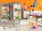 Jugendzimmer Kinderzimmer NEW GENERATION Eiche Grau&Creme Jugendmöbel Set komplett 4-teilig Kleiderschrank 3-türig Schreibtisch Bett 90x200 Wandregal