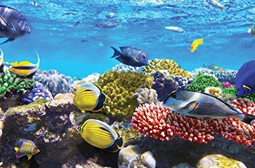 4Ziegelsteinwand abnehmbar Wand Wandbild Zimmerdekorations-Coral Reef finden Sie Fisch Nemo bei