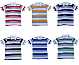 Indistar Boys Half Sleeves Cotton Polo T-Shirts(Pack of 6)_Red::Blue::Yellow::Purple::Green::Black_5-7 Years