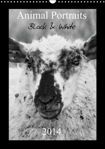 Animal Portraits Black & White 2014 CH Version (Wandkalender 2014 DIN A3 hoch): Schwarzweiße Portraits von tierischen Gesichtern. (Monatskalender, 14 Seiten)