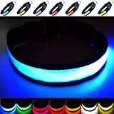 Fun Pets Super Bright USB Rechargeable LED Dog Safety Collar - Great Visibility & Improved Safety - 7 Colours, 5 Sizes (Blue, Medium)