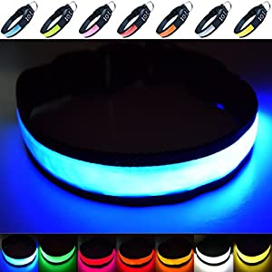 Fun Pets Super Bright USB Rechargeable LED Dog Safety Collar 12