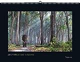 2017 Magische Wälder: Schwarz, Großformat (KUNTH Wandkalender Black Edition) -