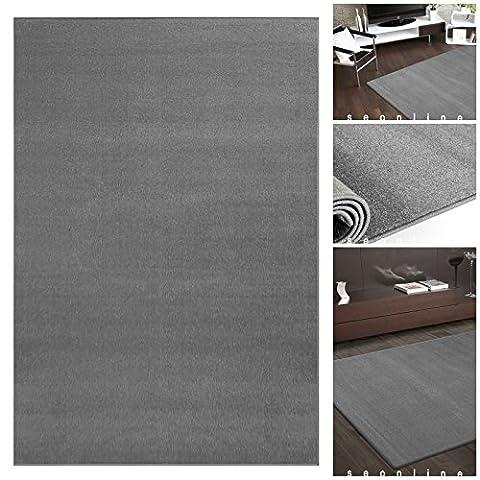 Teppich UNI FLAT Moderner Grauer Flachflor Teppich | m. ÖKO-TEX geeignet für Kinderzimmer | Kurzflor Läufer Teppiche für Schlafzimmer, Esszimmer oder Wohnzimmer | Einfarbig in Grau ohne Muster, Größe:80x150