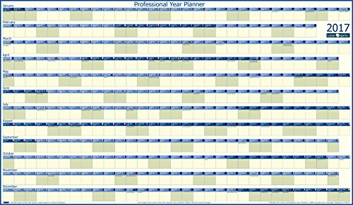 professional-extra-large-year-wall-planner-2017-unlaminated