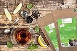 Tee-Geschwister BIO Detox Tee   Brennesseltee zur Begleitung einer Diät oder Entschlackungskur   ohne Zusatzstoffe & zuckerfrei - 6