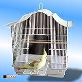 Jaula-de-Pjaros-Color-Blanco-Maimi-Periquito-Islas-canarias-parrotlets-Pjaros