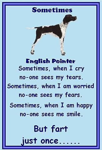 English Pointer - Novelty Dog Fridge Magnets - Sometimes