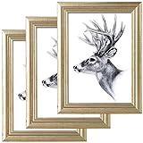 WOLTU Set de 3 Cadre Photo 30x40cm Artos Style en Bois et Verre Cadre décoration pour la Maison Or 9444-3