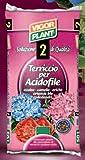 Vigorplant Terriccio per Piante Acidofile 80 lt
