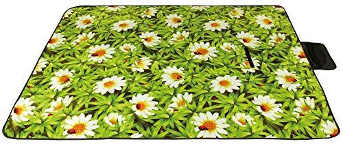Picknickdecke wasserabw. mit Fotodruck, Auswahl: Größe - 200x300 cm Design - Daisy, Stranddecke Kofferraumunterlage Campingdecke - Mikrofaser-daisy